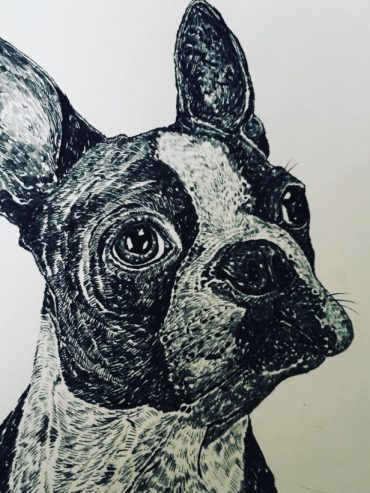 Biro Frenchie